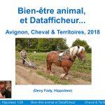 Salon du bien etre animal 2017