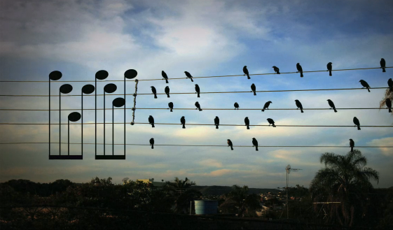 Music bien etre