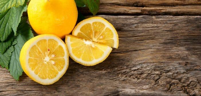 Le citron fait-il perdre du poids - Apizen.fr