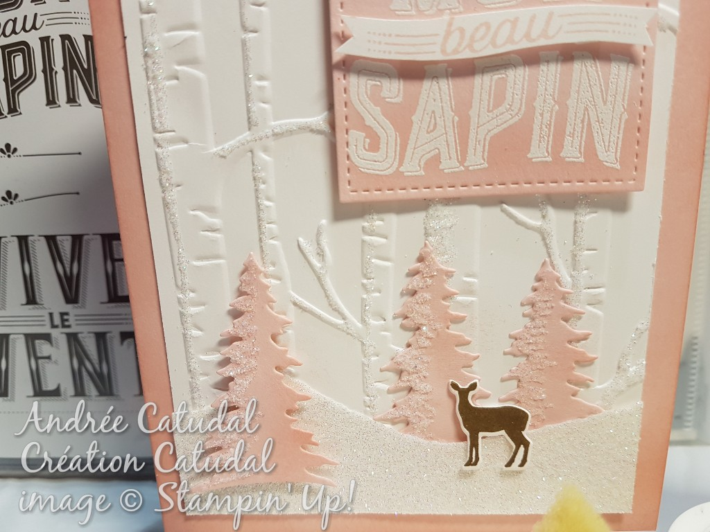 Carte stampin up noel