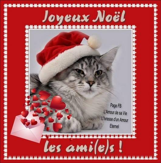 Carte joyeux noel chat